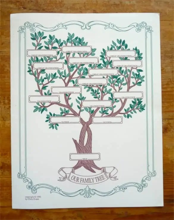 family tree template 1541
