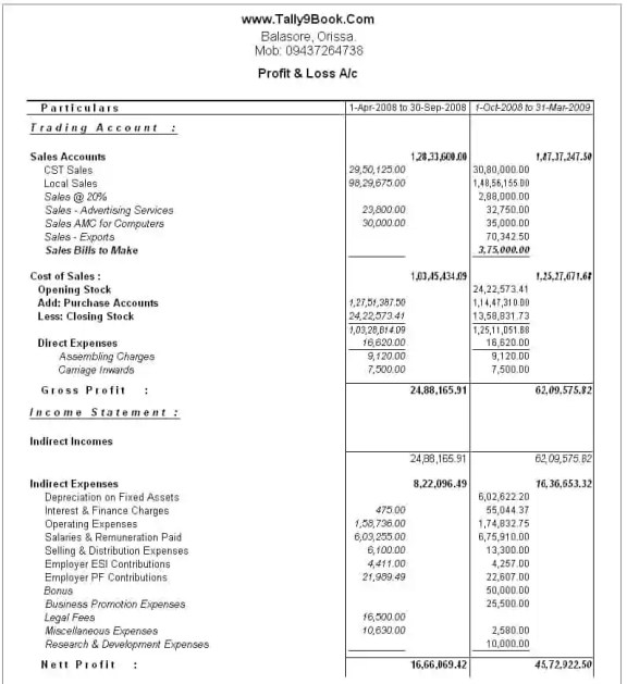 profit and loss account format 1541