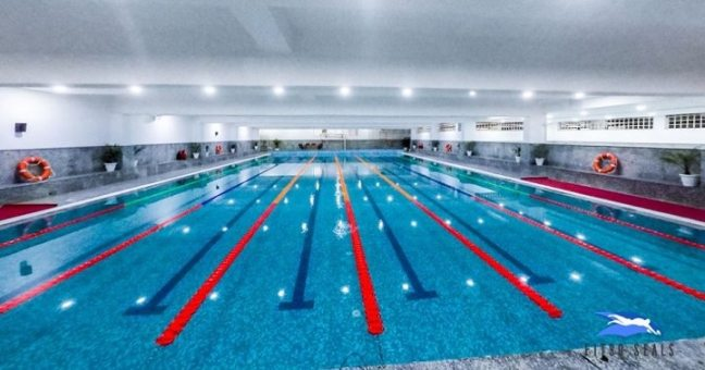 fitso SEALs pool: swimming pool in Noida