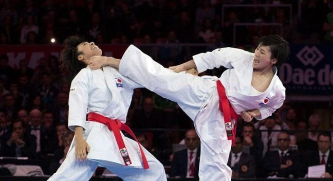 brown belt in karate: new year resolution