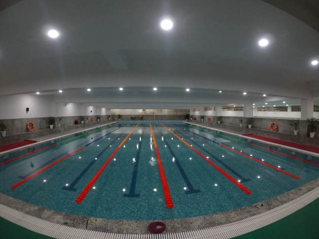 swimming classes in delhi ncr