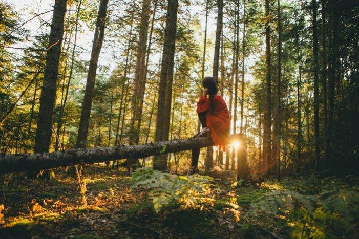 Vrouw die op een boomstam zit in een bos kijkend naar een zonsopgang.