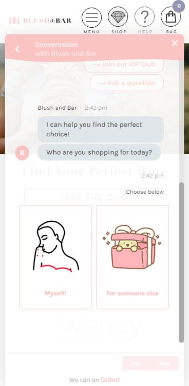 Blush & Bar Gobot Gift Finder Chatbot Example #2