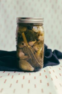 Close up on jar of pickling Brussel sprouts against a cloth background - The Mummy