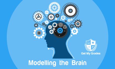 The Computer Brain