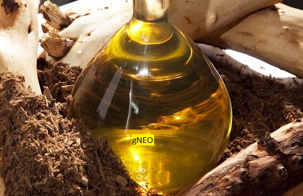 Australian Sandalwood Oil