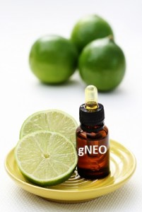 Lime Essential Oil