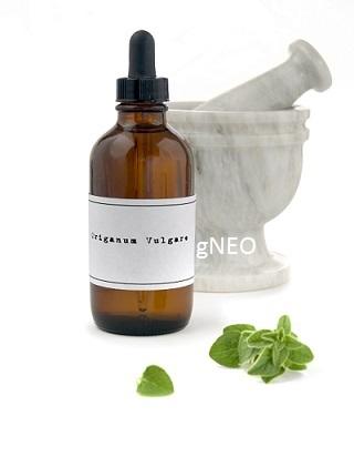 Organic Origanum Essential Oil