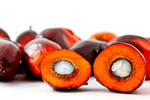 Palm kernel oil RBD