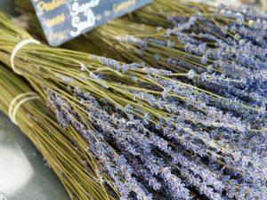 Lavender 40-42 fragrance oil