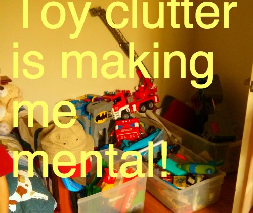 Toy clutter is making me mental!