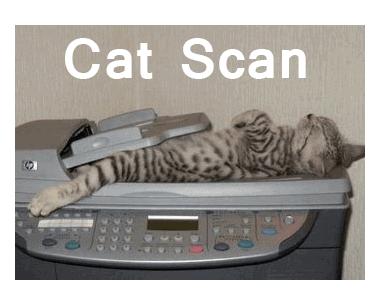 catscan Doctor Humor - Medical Memes - Dental Funnies