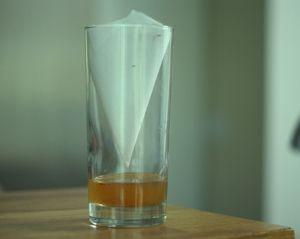 Sugar-water-trap-for-flies