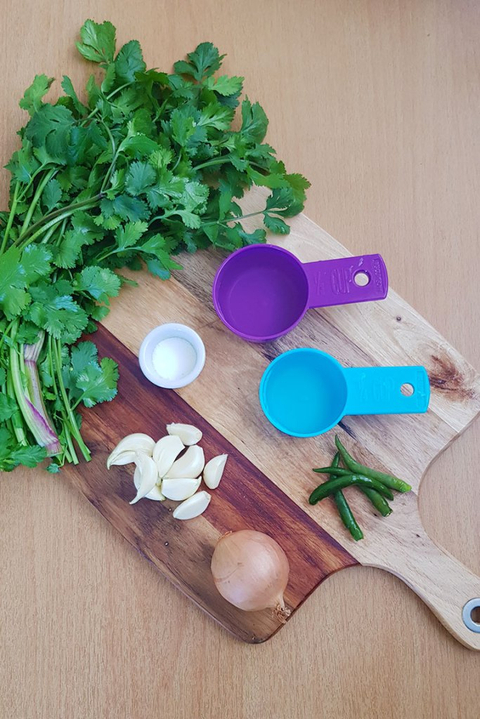 Ingredients for Easy Coriander Sauce