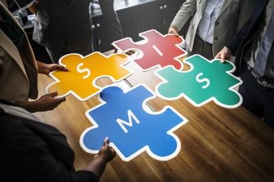 sims puzzle 1