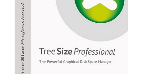 TreeSize Professional License