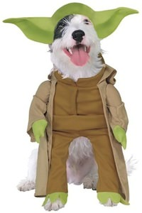 Yoda dog costume for Star Wars loving animals