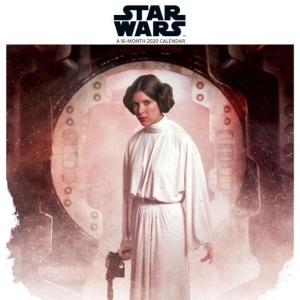 2020 Star Wars Saga Wall Calendar