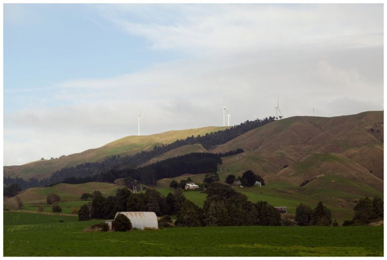 View out over wind farms in Raglan