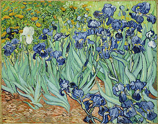 Van Gogh's Irises at the Getty Museum L.A.