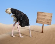 ostrich with head in sand - avoiding Coronavirus issues