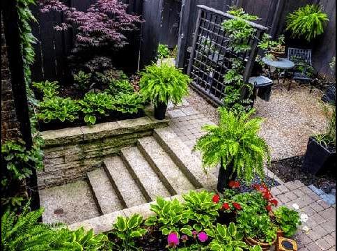 Cabbagetown Cottage Toronto Garden 2