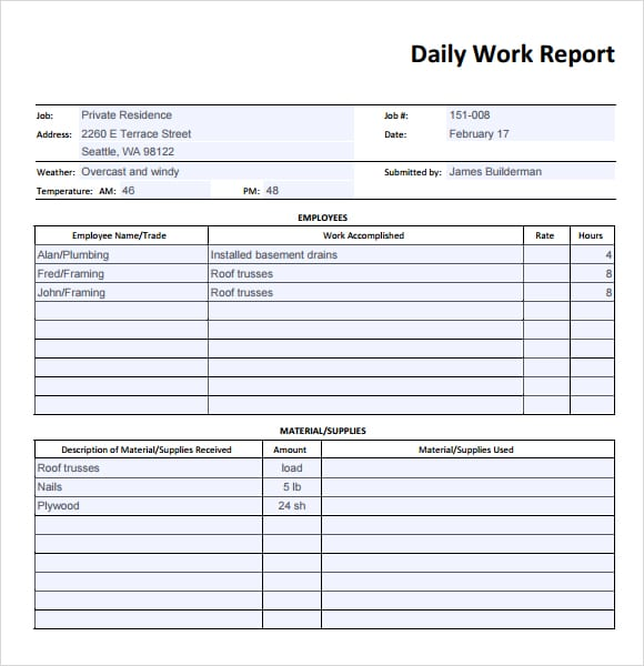 Daily Report Templates  Word Excel  Formats