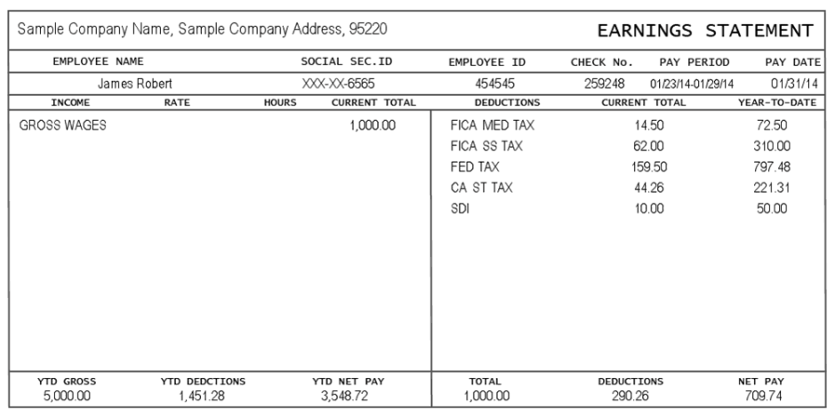 Make A Pay Stub Template Zrom