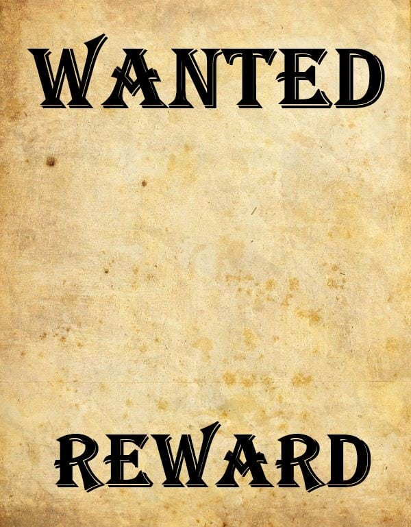 9 Wanted Poster Templates Word Excel PDF Formats – Wanted Poster Word Template