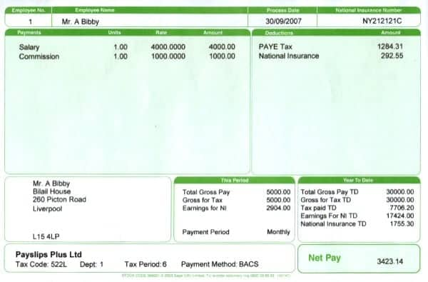 Payslips Sample Template Examples – Pdf Payslip Template