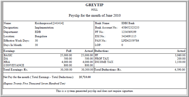 Payslip Template 9  Free Payslip Template South Africa