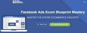 Read more about the article Ricky Hayes – Facebook Ads Ecom Blueprint Mastery
