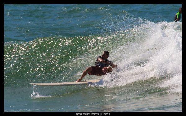 זאב הים מאשדוד גלישת גלים לונגבורד
