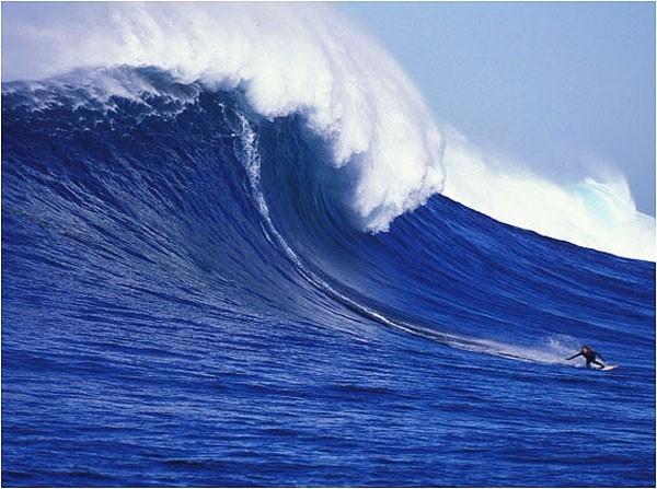 מה הקשר בין קונור מקגרגור וגלישת גלים