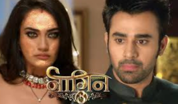Naagin 3 cast name and images