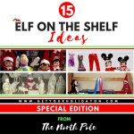 Elf on the Shelf Special Edition