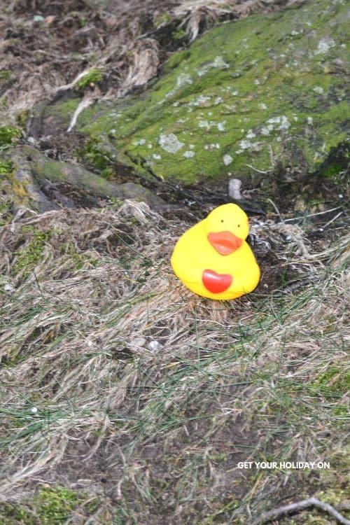 Rubber Ducks Scavenger Hunt Ideas #play #party #ducks