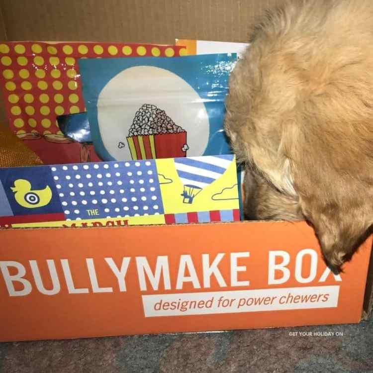 A bullymake box for dog's Easter Basket.