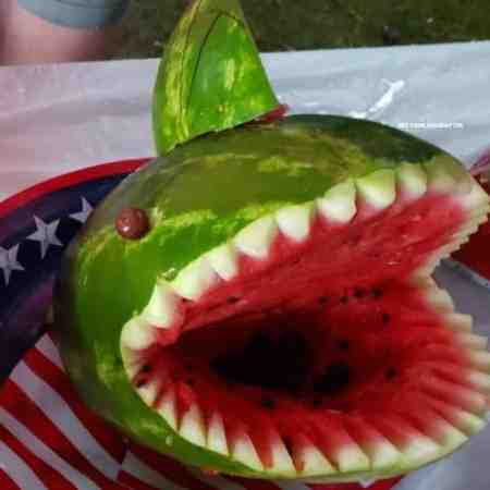 watermelon shark carving ideas.