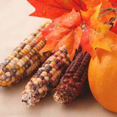 Corn represents the fall season when Thanksgiving party games are played.