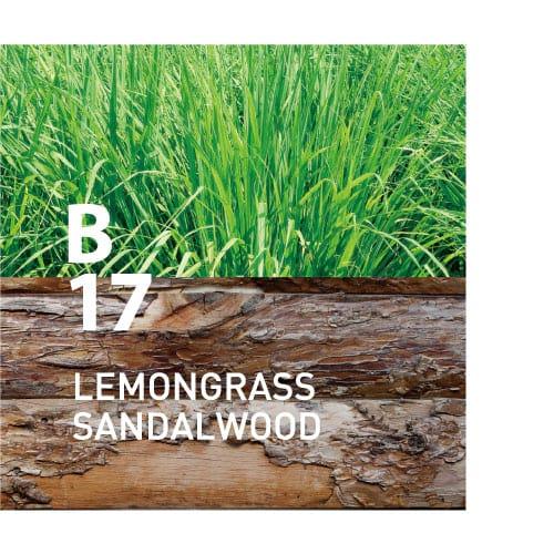 B17 LEMONGRASS SANDALWOOD