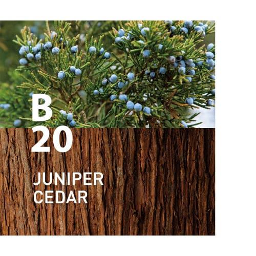 B20 JUNIPER CEDAR