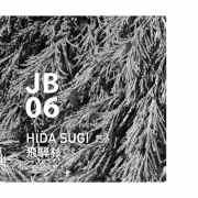 JB06 HIDA SUGI