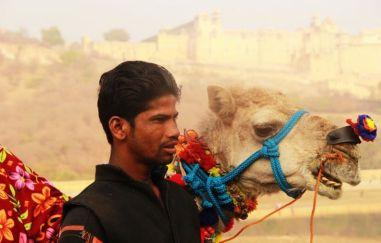 Jaipur21