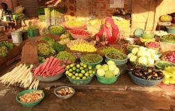 Jaipur57