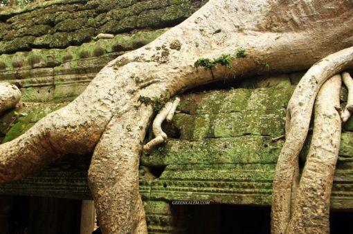 AngkorWatTapinaklari74
