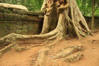AngkorWatTapinaklari79