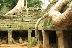 AngkorWatTapinaklari85