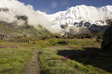 AnnapurnaBaseCamp33