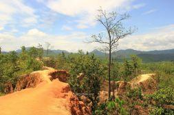 ChiangMai25